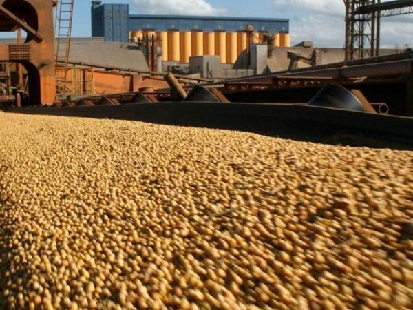 Setiembre fue el mes con menos salida de soja en el año