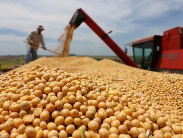 Leve reducción de las exportaciones de soja en abril